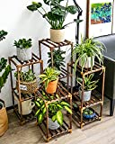 Tiered Plant Stand Rack 6 Tier 11...