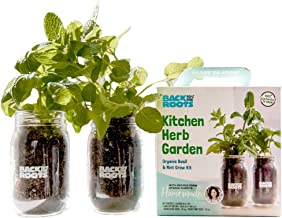 Organic Indoor Herb Garden Kit by Back to the Roots – Non-GMO Basil and Mint Plants Starter Kit with Organic Seeds, Organic Soil, Biochar, and an Ayesha Curry Recipe Book