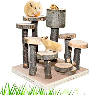 CooShou Hamster Wood Playground Toy Apple Wood Chewing Toys Hamster Steps Stairs Climbing Toys with Feeder for Small Anima...