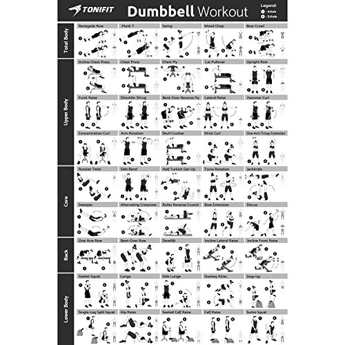 "24"" x 36"" Laminated Poster W/ 45 Dumbbell Exercises For Core, Back, Total Body - Ideal For Home & Gym Workout - Fitness Chart W/ Stick Matte Finish & Square Velcro Stickers"