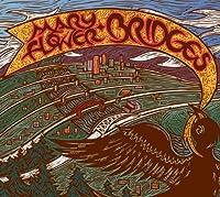 Bridges by Mary Flower (2009-02-10)