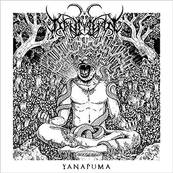 Yanapuma