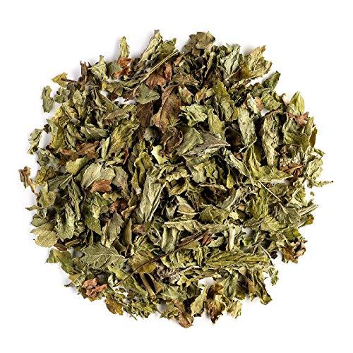 Grüner Minze Biologischer Kräuter Tee – reichhaltig und erfrischend – Speer Minze - Speerminze - Mentha spicata direkt - Grünerminze Kräuter Tee Speerminze 100g