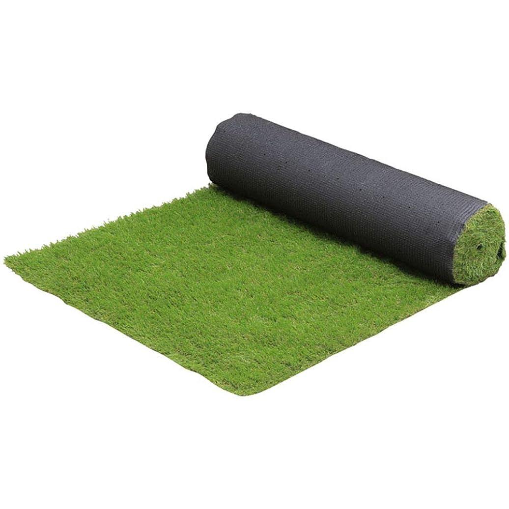 葉を拾うインテリア誰でもアイリスプラザ リアル人工芝 1×5m 5S 奥行500×高さ1×幅100cm
