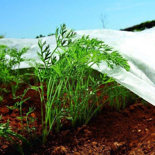 Tissu de protection contre le gel 1,6 m x 10m de cultures de couverture non tissé des plantes moustiquaires