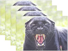 HoDeColor Snarling Black Panther (Leopard) Wildlife Animal Placemats Table Mat Set of 6, 12 x 18 Washable Table Place Mats for Kitchen Dining Room Table Decoration