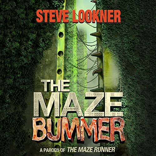 The Maze Bummer audiobook cover art