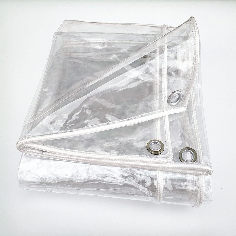 Hssure Transparent Waterproof Tarpaulin Windproof specialty shop Premium Ranking TOP7 0.3mm