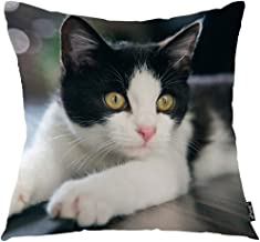 oFloral Spotted Cat Throw Pillow Cover Baby Pet Animal Kitty Kitten Child Pussy Decorative Pillow Case Home Decor for Sofa Bedroom Liveroom 18x18 Inch Pillowcase