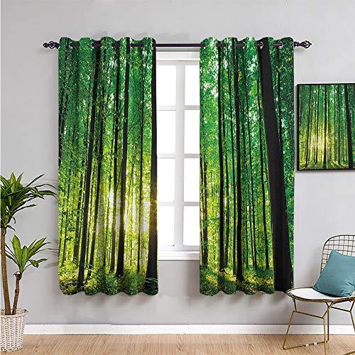 Cortina de bosque linda cortina, 182,88 cm de largo verde bosque al amanecer, escénica mañana, naturaleza, medio ambiente, ecología, serenidad, fácil de instalar, verde, negro, amarillo, 163 x 182 cm