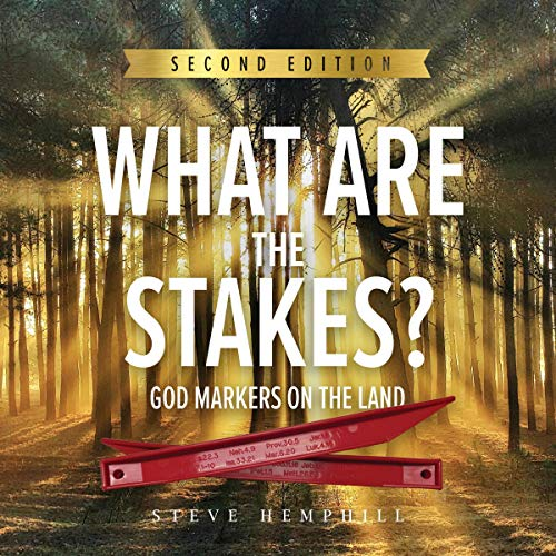 What Are the Stakes?  By  cover art