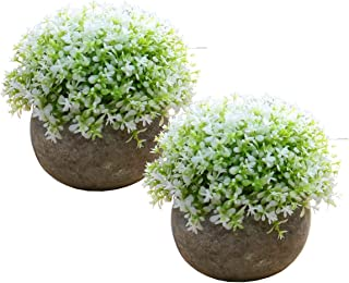 Fab Ivy 2 Potted Artificial Green Grass Flower Plants Small Fake Plastic Plant Flowers Arrangement for Home Shelf Furniture Kitchen Counter Office Decoration (White Clover)