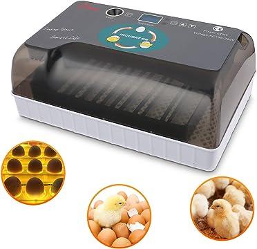 incubadoras 12 huevos