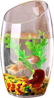 Xuejuanshop—Peceras Personalidad Creativa Cristal Transparente Pecera Acuario Planta hidropónica Goldfish Tank (tamaño :