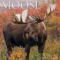 Moose 2021 Calendar