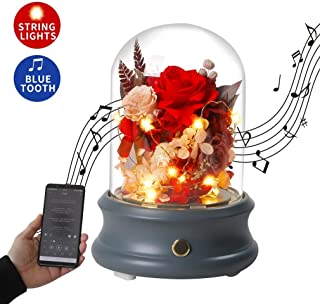 ANLUNOB Beauty and Beast Enchanted Rose Bluetooth Speaker with LED Light, Preserved Forever Rose Glass Dome Love Tokens for Her Wedding Anniversary Birthday Valentine's Day Red