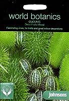WB 英国ジョンソンズシード Johnsons Seeds world botanics collection Cucumis Deco Fruits Mixed ククミス・デコ・フルーツ・ミックス