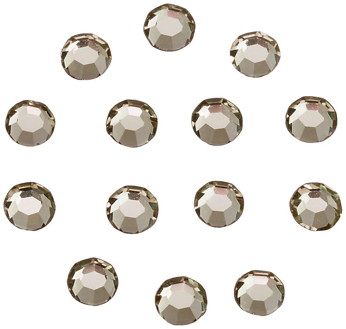 魔女サイバースペース真面目なネイルアートパーツ ブラックダイヤモンド SS3:約1mm 240P
