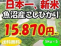 平成28年新潟県産特定産地米 (魚沼産5㎏×5)