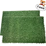 """LOOBANI Dog Grass Pee Pads, Artificial Turf Pet Grass Mat Replacement for Puppy Potty Trainer Indoor/Outdoor Use - Set of 2 (18"""" x 23"""")"""