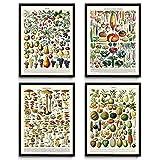 Küche Vintage Prints Set von