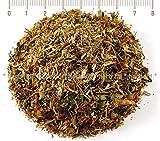 Johanniskraut, Johanniskraut-Tee, Hypericum Perforatum L., Kräuter Blüten