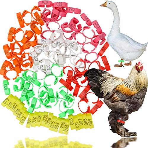 LeonBach 120 Pcs Poultry Birds Leg Rings, 6 Colors Numbered Identification Leg Rings Clip for Poultry or Birds Such As Chickens, Ducks, Geese, Pigeons and Parrot