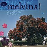 26 Songs - Melvins