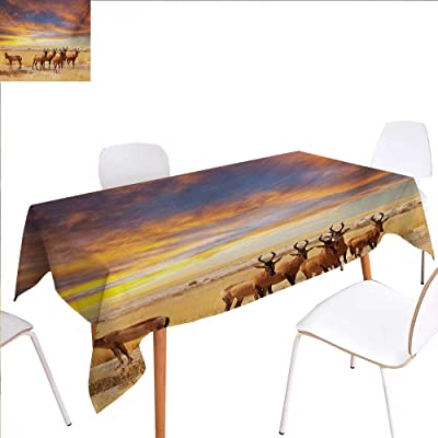 familytaste Safari Printed Tablecloth Antelope Crowd on Grassland at Sunset Tropic Exotic Savannahs African Animals Rectangle