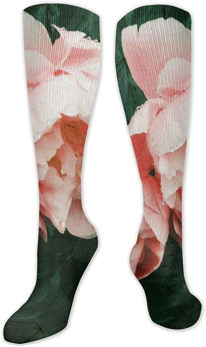 Pink Rose Knee High Socks Leg Warmer Dresses Long Boot Stockings For Womens Cosplay Daily Wear