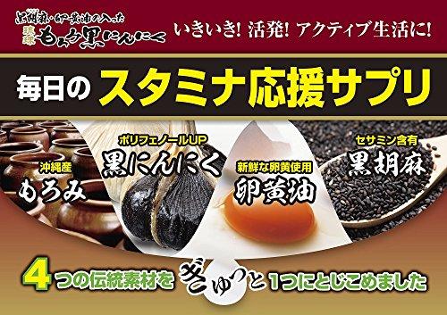 井藤漢方製薬黒胡麻・卵黄油の入った琉球もろみ黒にんにく約66日分198粒