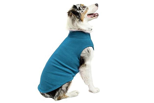 Best dog sweater for dachshund
