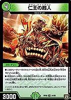 デュエルマスターズ 双極篇 仁王の超人(アンコモン) 轟快!!ジョラゴンGoFight!!(DMRP05)