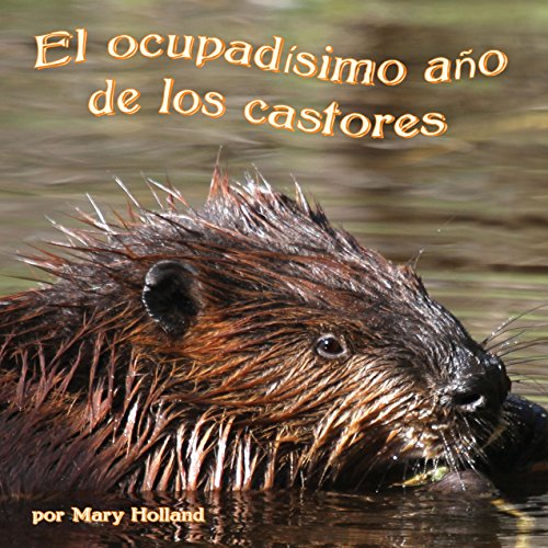 El ocupadísimo año de los castores [The Beavers' Busy Year] cover art