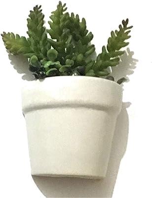 Wall Hanging Planter Pot