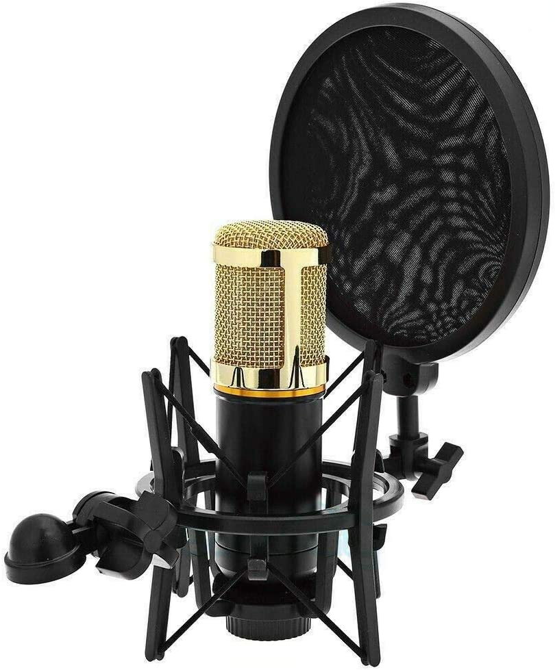 Adjustable High quality Studio Microphone Mic Shock Shied High order Mount Screen +Wind