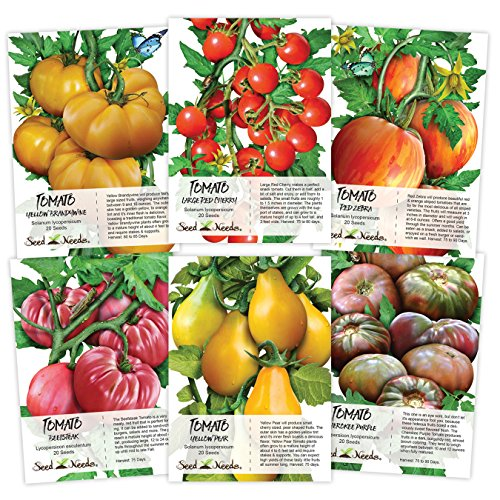 Seed Needs Multicolor Tomato Seed Packet Collection (6 Individual Packets)