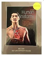 Human Anatomy fourth edition Michael P. McKinley Salt Lake Community College (SLCC) BIOL 2320