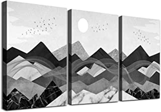 3 piece Framed Canvas Wall Art for Living Room bathroom Wall decor Black and white..