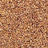 Trigo en grano Ecolgico a granel - 500