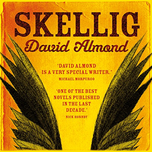 Skellig cover art