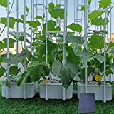 Solar Power Hydroponics Growing System,Big Hydroponic Gardening System with Smart Controller, Auto Remind Self-Watering Planter with 60' Climbing Trellis for Cucumber Tomato Basil Pepper(3 Modes,3IN1)
