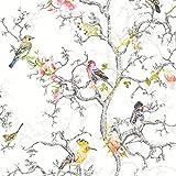 Ornithologie oiseaux papier peint blanc Holden 98060