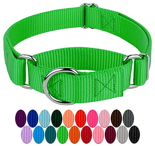 Country Brook Petz - Hot Green Martingale Heavy Duty Nylon Dog Collar - 21 Vibrant Color Options (1 Inch Width, Medium)