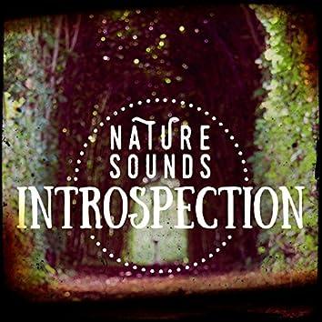 Nature Sounds: Introspection