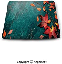 Sweet Home Memory Chair Cushion,Autumn Red Leaves on Blue Turquoise Background Copy Space top View,Slip Non Skid Rubber Comfort pad