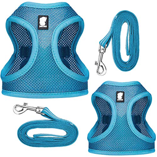 Geyoga 2 Sets Cat Outdoor Walking Harness Set with Leash Reflective Cat Straps Vest Mesh Fabric Cat Harness Adjustable Pet Chest Strap for Outdoor Walking