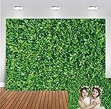 Daniu 210cmX150cm Verde Hojas pequeñas Telones Estudio Llanura Hojas de Boda Fondo de Foto de Foto Vinilo de Fiesta 7x5FT Niños Fotografía