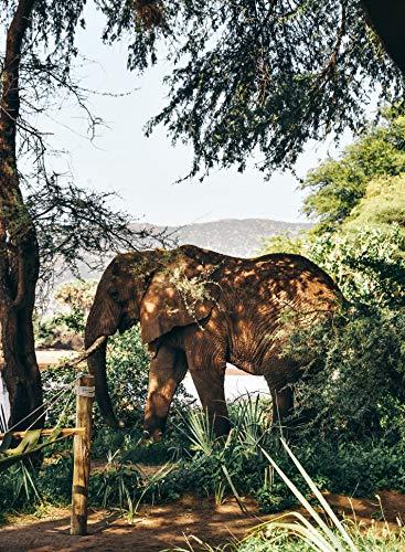 Adultos Rompecabezas 500 Piezas Elefante Apático La Mejor Decoración Para El Hogar De Bricolaje Regalo Ideal 52x38cm
