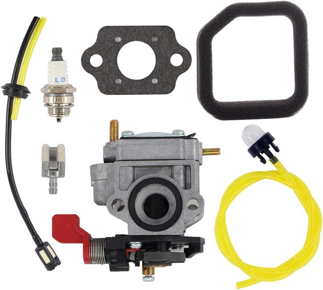 Hippotech Carburador para soplador Homelite Ryobi UT-08072 UT-08572 UT-08042 Carburador UT-08542 UT-08012 Reemplaza el número de Pieza 308028004 de Homelite Ryobi